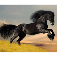 Full Diamond Painting Horse Is Ready To Fly Diy Diamond Embroidery A Picture Good For Career Decorated Living Room A Best Gift