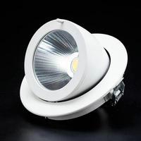 30W COB LED Downlight AC110V-240V Cold/Warm White CE&ROHS 30W COB LED Spotlight ceiling