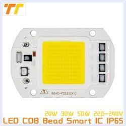3pcs led cob chip leds 50w 30w 20w 230v lamp beads input smart ic fit no.jpg 250x250
