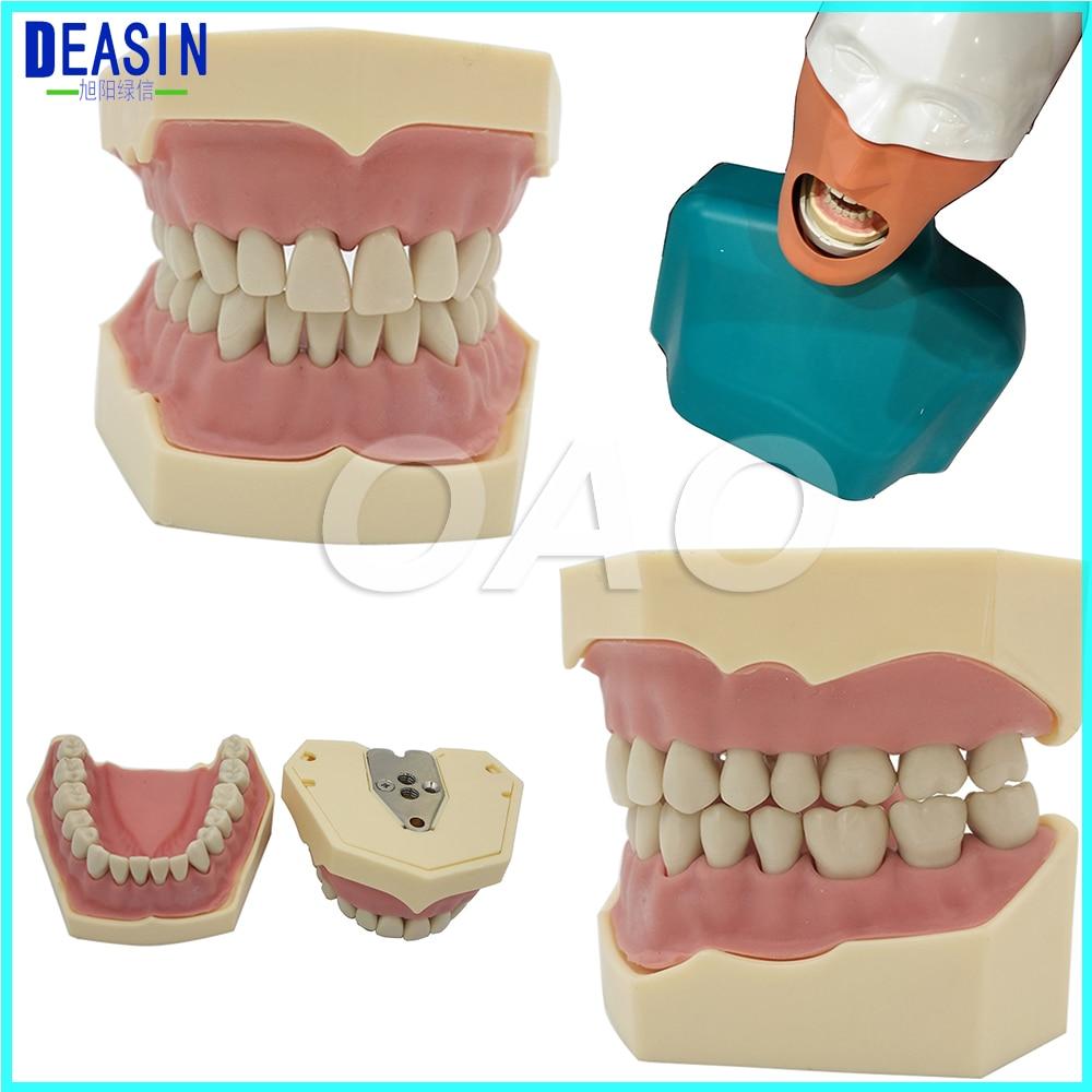 Dental Soft Gum Removable 28PCS Teeth Model Nissin 200 Compatible вспышка nissin i60a for sony