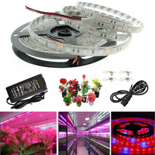 A6 LED Plant Grow Lights 5050 LED Strip DC12V  for Greenhouse Hydroponic Plant Growing,5m/lot