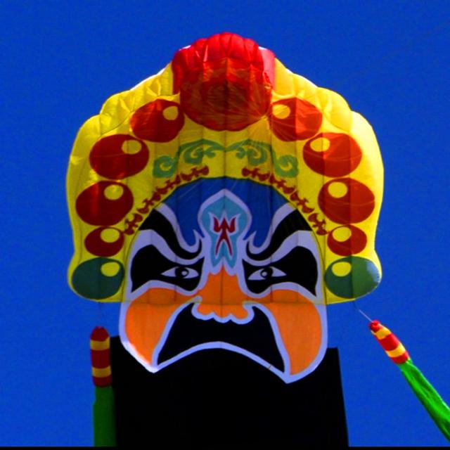Envío de la alta calidad grande soft kite 20 m pie en el cielo de la ópera de pekín de nylon ripstop kinderdrachen kite línea de cuerda albatros