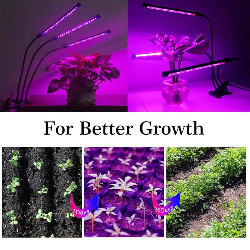 BEYLSION 85 Espectro Completo LEVOU Crescer Luz-265 V E27 Lâmpada Planta Uma/Duas Cabeças Fitolamp Para Efeito de Estufa hidropônico Flor Vegetal