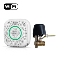 CE RoHS Fire Alarm Natural/LPG Gas Detector Smart Phone Control Home Use WiFi Combustible Gas Leakage Sensor with Manipulator