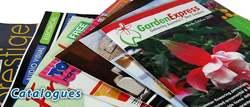 Бесплатная доставка, 148x210 мм нормальный a5 размер журнала и брошюры показывал, MOQ можно договориться с поставщиком