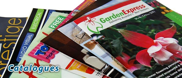 Free Shipping ,148x210mm Normal A5 Size Magazine And Brochure Pinting,MOQ Is Can Be Negotiated With Supplier