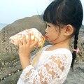 Aqumotic большой натуральный раковины 1 шт. морской воды Улитка свисток может дуть раковины свистки игрушки Средиземноморский Рог сувенир