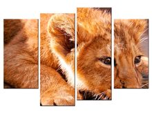 4 pieces / set Lion Canvas Art Print Painting Poster Wall Pictures for Home Decoration wall decor(China)