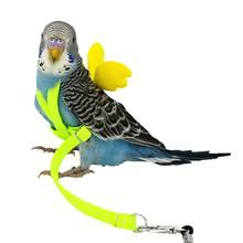 noroomaknet Pet Parrot Bird Harness And Leash Flying Rope Straps Outdoor Training Traction Rope For Budgerigar Cockatiel(China)