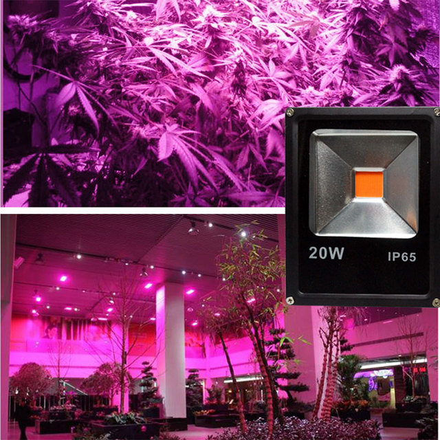Led Grow Light 100W 30W 50W Full Spectrum 230v Outdoor Plant Growth L& Hydroponics Led Greenohuse & Led Grow Light 100W 30W 50W Full Spectrum 230v Outdoor Plant Growth ...
