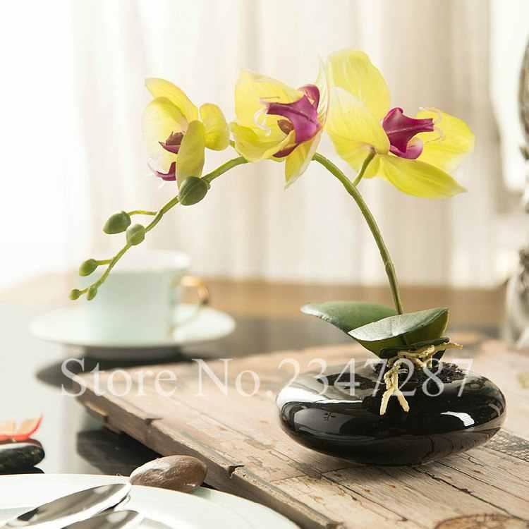 Высокое качество фаленопсис Бонсай в горшке фаленопсис Орхидея цветок желтый фаленопсис орхиды бонсай 50 шт.