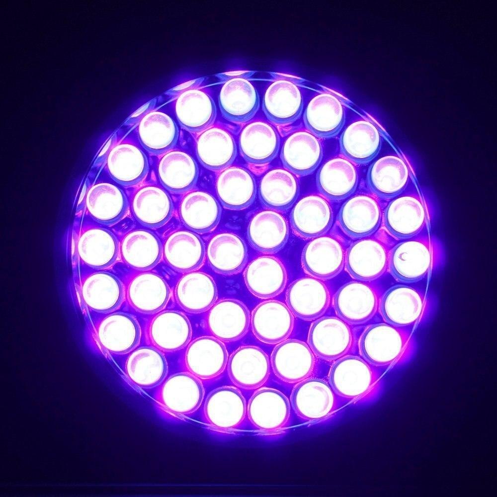 Lanternas e Lanternas de 51 lanterna led uv Distância de Iluminação : ' Class=propery-des> 50= m=&#8221; class=&#8221;img-responsive&#8221;/></p> </td> </tr> <tr> <th align=