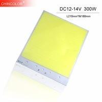 300W COB Strip Chip LED Source White Color DIY Car Light Lamp Bulb Spotlight DC 12V 14V 2000MA L21CMx18CM Lighting Project JQ