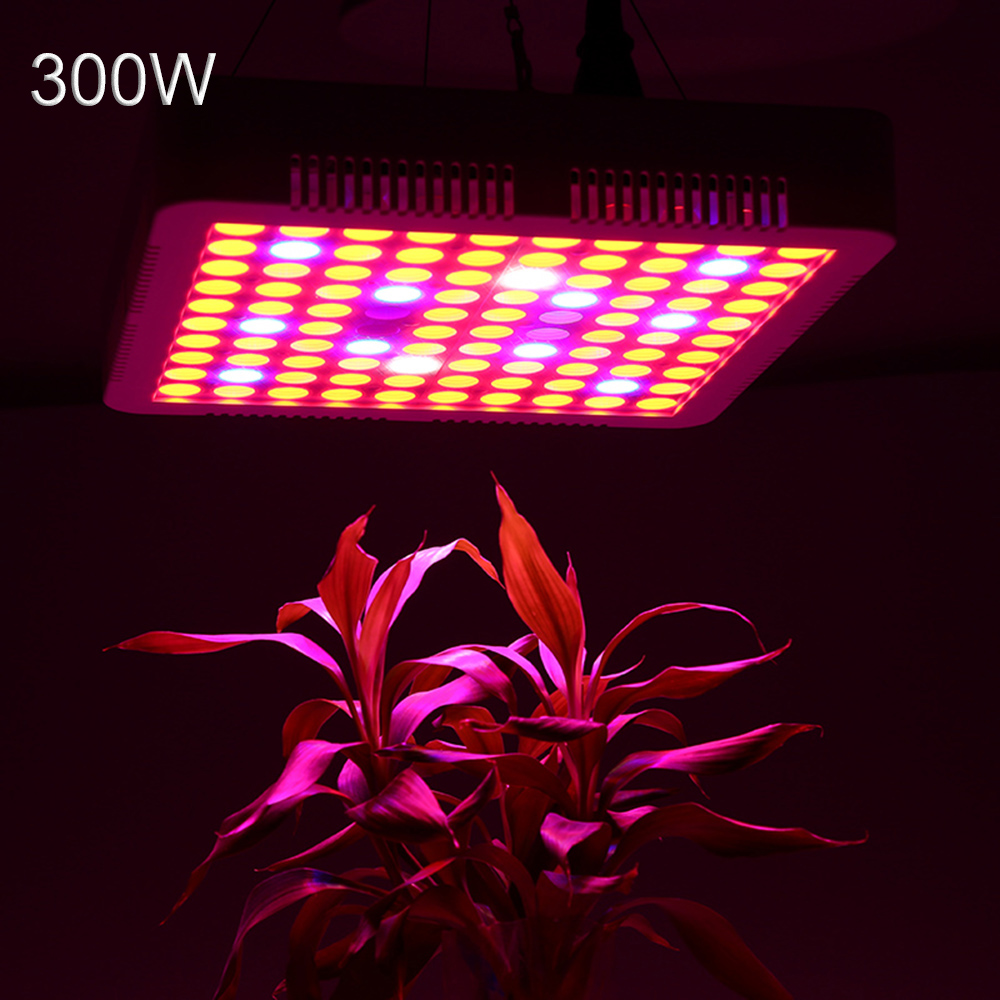LED grow light Phyto Lamp 300W Full Spectrum for Indoor Greenhouse grow tent plants grow led light led grow light 300w full spectrum grow lamps for medical flower plants vegetative indoor greenhouse grow lamp