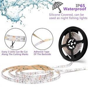 Image 3 - مصابيح فيتو LED بطول 5 متر شريط إضاءة LED كامل الطيف 300 مصباح LED 5050 رقاقة LED Fitolampy تنمو الاضواء للبيوت الزجاجية النباتات المائية