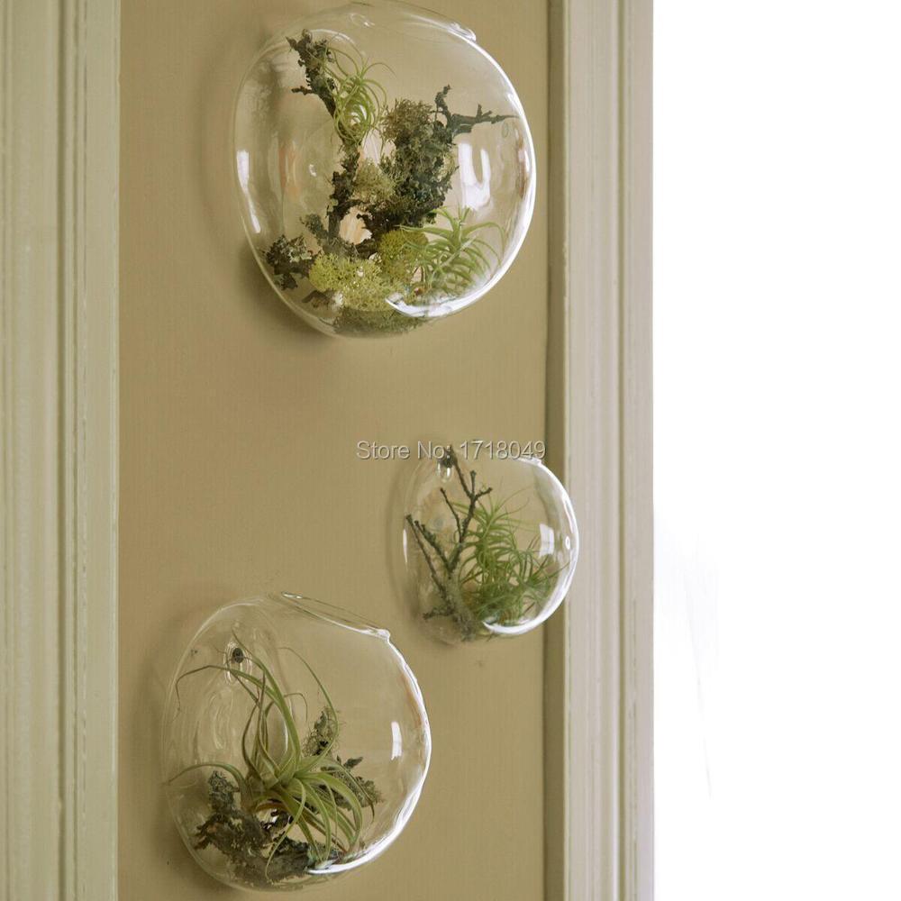 comprar unidsset semicrculo terrarios de vidrio pared pecera plantas de interior titular pared jardinera florero decoracin de la