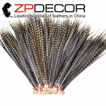 NEW!ZPDECOR 75-110cm(30-44inch) 10 pieces/lot Good Quality Natural Long Lady Amherst Pheasant Tail Feathers for Carnival Decor