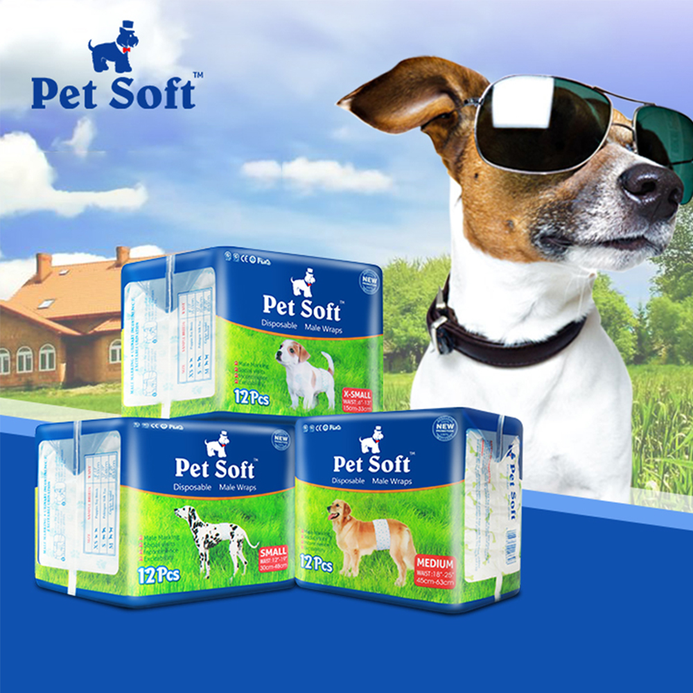 Pet Diapers For Male Dogs Special Teddy Golden Hair Courtesy With Diapers Big Dog Can Also De Used Pet Diaper Pad Braga Perro