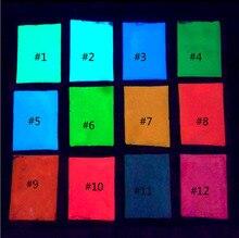 12 couleurs néon couleurs Phosphorescent poudre lumineuse 10g lueur dans lart des ongles sombres acrylique coloré décoration des ongles