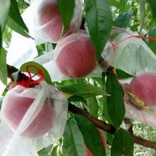 10pcs/lot Garden Pots Planters Grow Bags Against Insect Pest Bird Plant Fruit Protect Drawstring Net Bag DropShipping #5