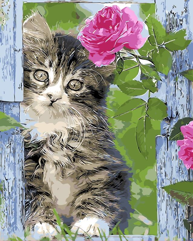 Cat and rose DIY Painting By Numbers Modern Wall Art Home Decor Hand Painted Oil Painting On Canvas Christmas Gift for friends
