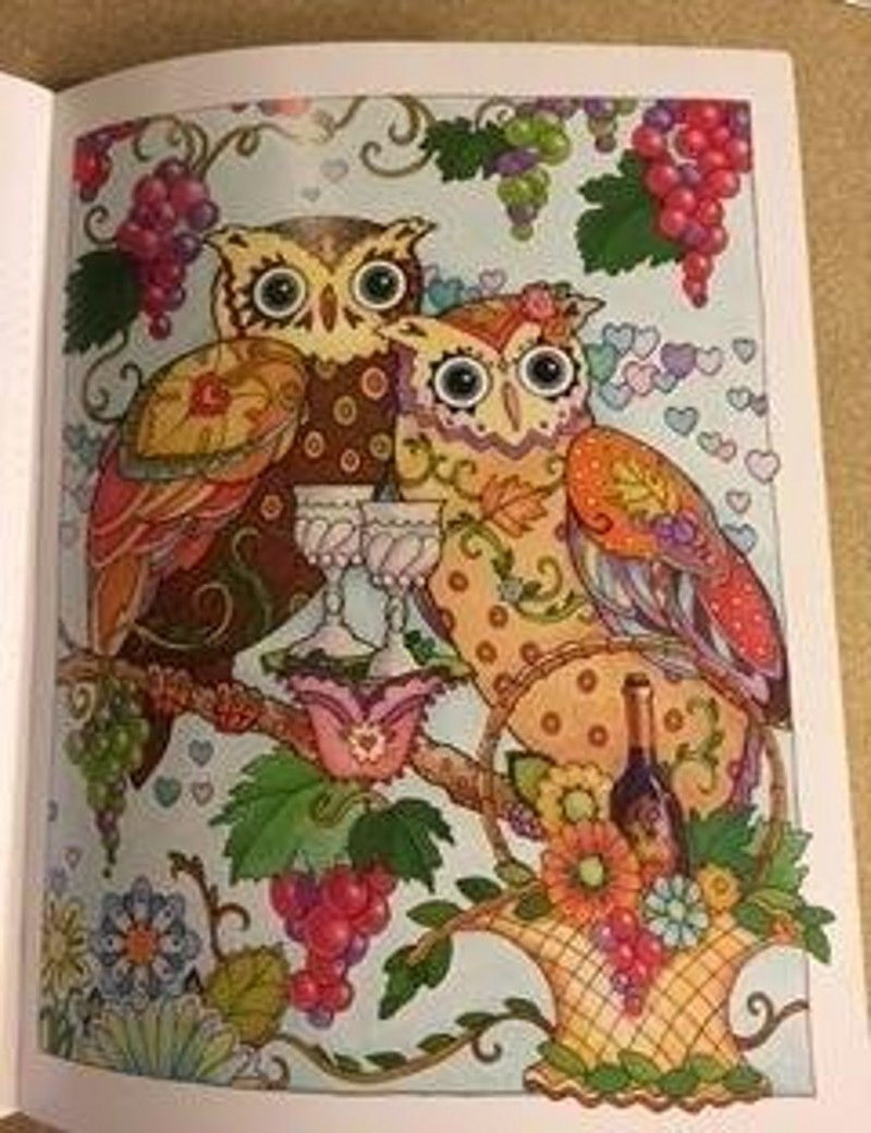 OWLS Coloring Book Antistress For Adult Relieve Stress Art Painting Drawing Graffiti Gift Books Libros In From Office School