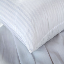 CV White Cushion Insert Soft PP Cotton Sizes 40-65cm