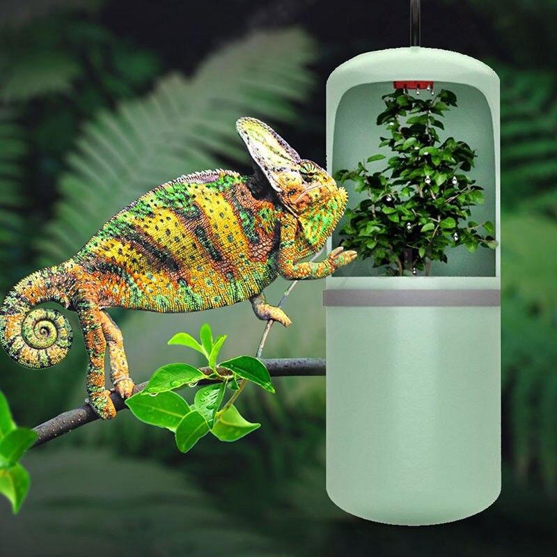 Reptile fontaine d'eau potable lézard caméléon distributeur d'alimentation eau potable automatique Terrarium amphibien Habitats 10X20 cm