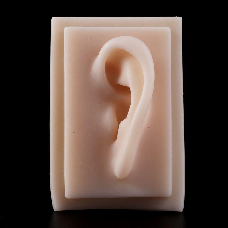 Человеческая Мягкая силиконовая левое ухо модель в натуральную величину иглоукалывание учебно-практический инструмент учебные материалы для медицинской науки