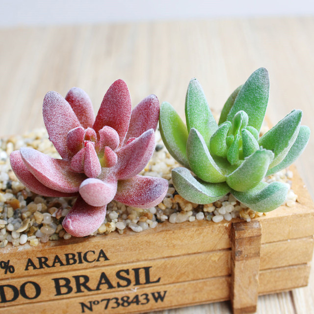 Christmas Succulent Decor.Us 1 45 15 Off Apricot Artificial Succulents Plants Grass Artificial Plants Fake Flower Christmas Decorations For Home Garden Decor In Artificial