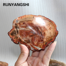natural stones and minerals crystal woodstone fossil tree for coaster home decoration wooden tree fossil madagascar  cup cushion