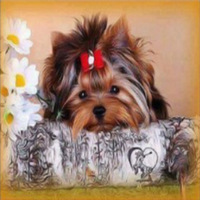 DIY Diamond Painting Wall Sticker Dog Stitch Embroidery Painting3D 5D Sticker 20x20 30x50cm Home Decor
