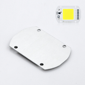 YNL COB LED Lampe 20W 30W 50W 70W 100W LED Chip Perlen 220V eingang IP65 Smart IC Für DIY LED Flutlicht
