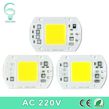 COB LED Lamp Chip Real Power 10W 15W 20W 30W 50W LED Lamp Bulb 220V 240V IP65 Smart IC For DIY LED Flood Light Spotlight