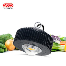 원래 크리 어 COB CXB3590 CXB 3590 LED 성장 빛 3000k 3500k 전체 스펙트럼 LED 성장 램프 실내 식물 성장 LEDLighting