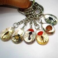 Wholesale Imitation Amber Keychain Metal Keyring Gem Stones Key Chains Transparent Simulated Amber Charm Pendant Gift