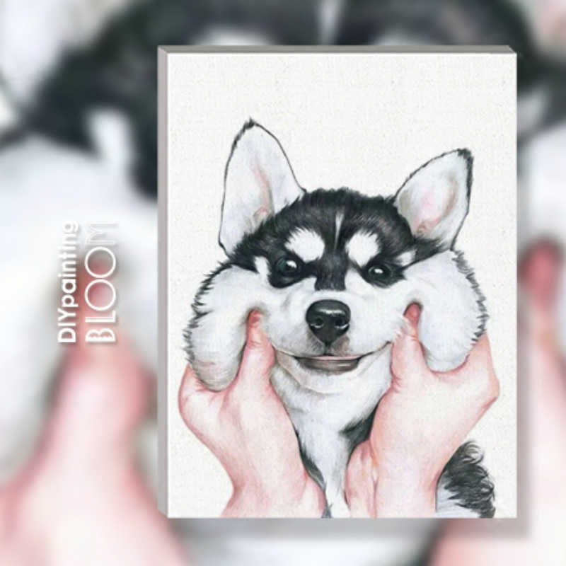 Cartoon Husky Diy Painting By Numbers Cute Dog Face Drawing Paint