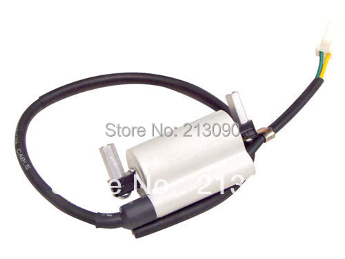 Ignition Coil For 125cc 150cc ATV Dirt bike Chinese