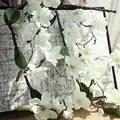 10 Pcs Aritificial Magnolia Vite Vite Fiori di Seta Decorazione di Cerimonia Nuziale Viti Della Parete Del Fiore di Orchidea Rami di Albero di Orchidea Corona