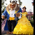 Beauty And The Beast Belle Costume 2015 Custom Made Cosplay Fantasia Adult Princess Belle Costume Halloween Costume For Women