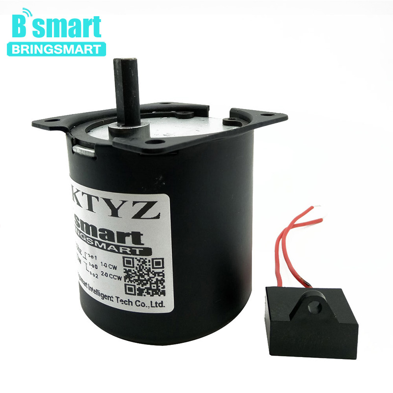 Bringsmart 70ktyz 160kg.cm AC Synchronous Motor 220V High Torque Mini Gear Reduction Motor AC Gear Motor Low Speed