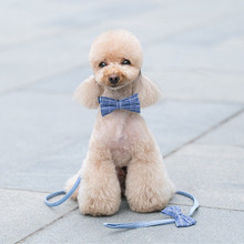 Blue striped dog collar bow tie personal custom pet pupply designer product &cat Collar leash Set