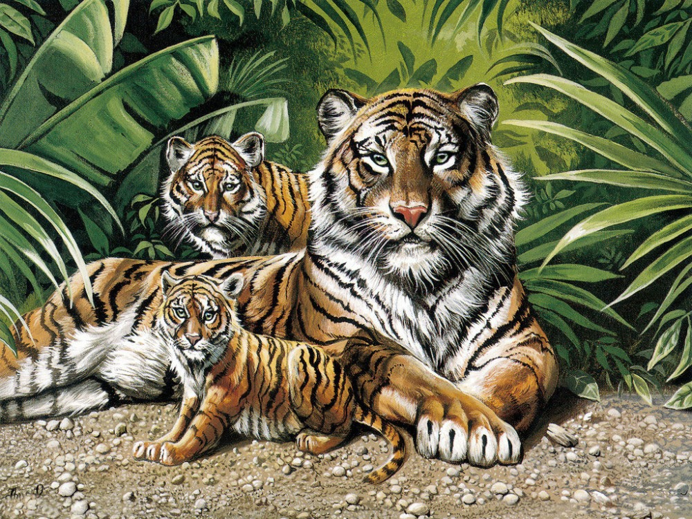 The Tiger Family Oil Painting Diy Paint By Numbers 50x40cm