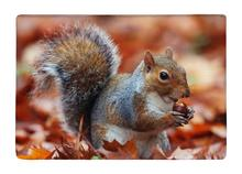 Floor Mat Cute Lovely Fat Squirrel animal On The Snow Print Non-slip Rugs Carpets alfombra For Indoor Outdoor living kids room