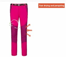 2016 womens spandex jogging pants for running sports female quick dry breathable anti-sweat clothing clothes apparel PS4082