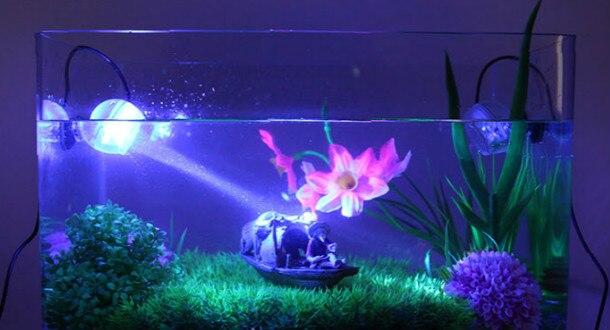 aquarium licht trendy water licht groen reflectie blauw. Black Bedroom Furniture Sets. Home Design Ideas