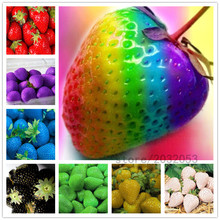 300pcs/bag rainbow strawberry seeds,giant strawberry,rare bonsai organic fruit seeds,9 colours,strawberry plants for home garden strawberry