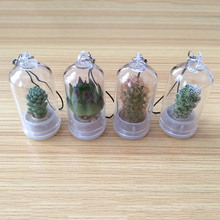 Lucky Drifting Bottle Succulent Plants Micro-landscape Car Pendant Car Mirror Hanging Ornament Home Car Decoration Randomly