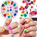 12 Color 24pcs 3D Dried Dry Nail Flower Art Wheel Decoration Manicure Tips nail art wheel Hot Selling