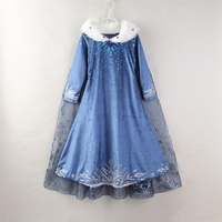 Spring girl dress ice snow long sleeve print girl shawl lace princess dresses children's clothing